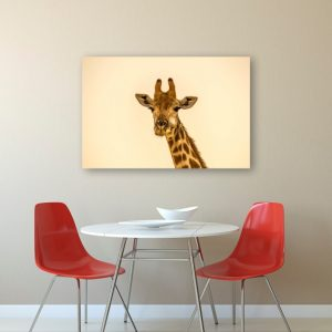 Girafa tablouri canvas lipestesidecoreaza 2